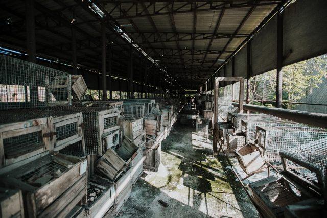 chernobyl_2018 (116 von 134)